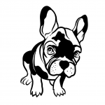 Bulldog Smaller Ears (PLP)